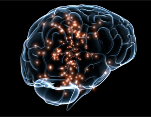 Rare and Common variation implicate microglial function in
